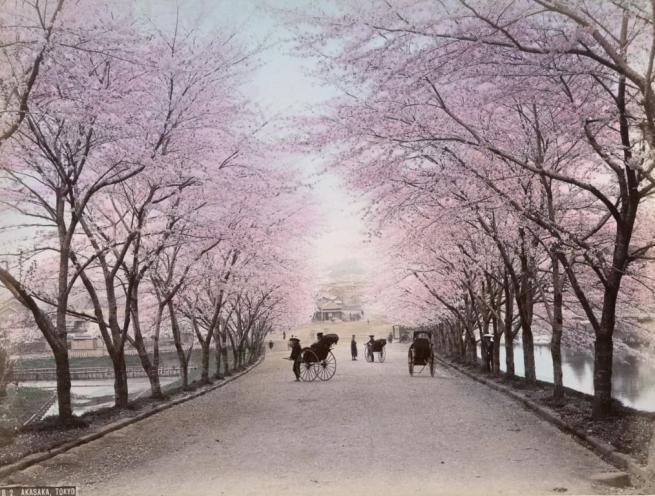 Renklendirilmiş fotoğraflarıyla 1890'ların Japonya'sı 20