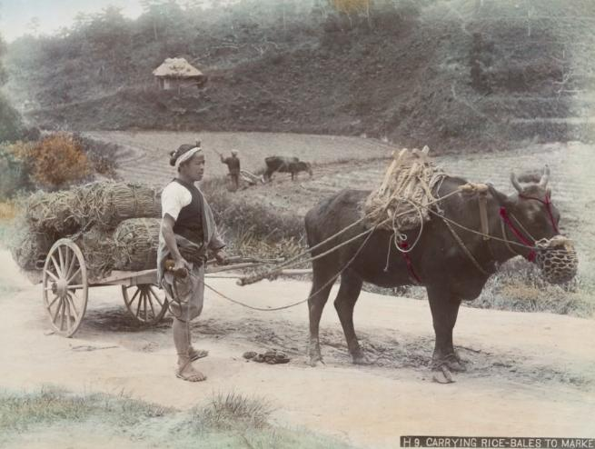 Renklendirilmiş fotoğraflarıyla 1890'ların Japonya'sı 22