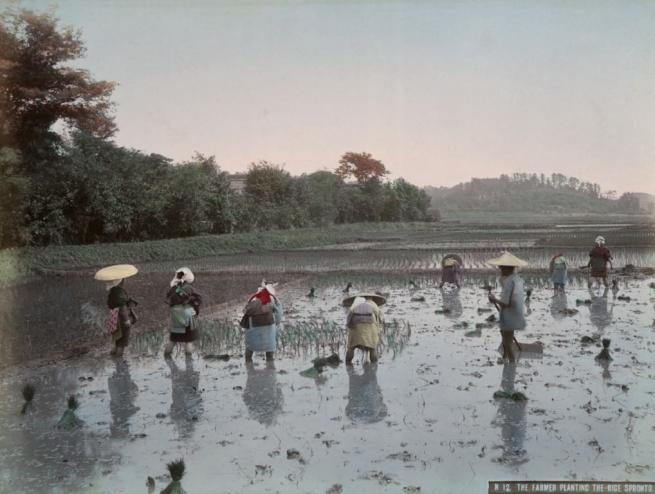 Renklendirilmiş fotoğraflarıyla 1890'ların Japonya'sı 5