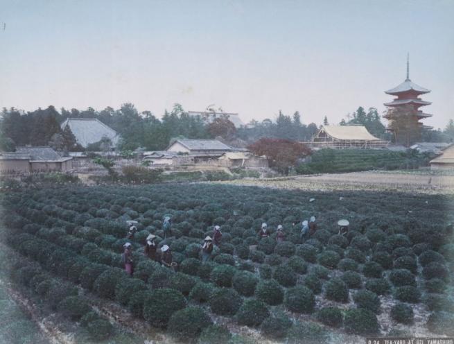 Renklendirilmiş fotoğraflarıyla 1890'ların Japonya'sı 7