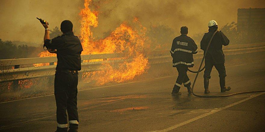 Bulgaristan'da çıkan orman yangını Türkiye sınırına dayandı!
