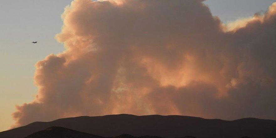 ABD'de 40 bin dönümlük yangın! 100 km öteden görülüyor