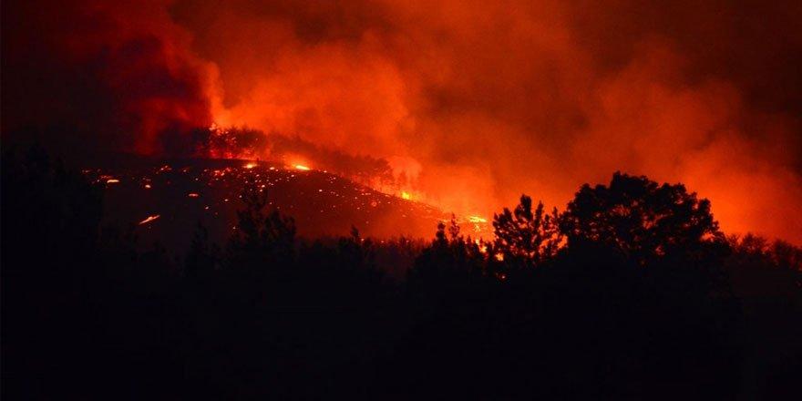 Adana Kozan'daki orman yangını sürüyor