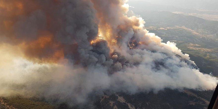 Ankara'da orman yangını! Saatlerdir müdahale ediliyor