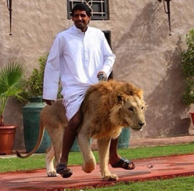 Bunlar sadece Dubai'de 25