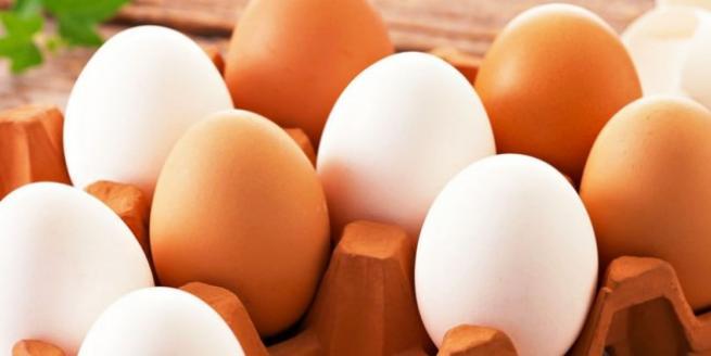 Yumurta yoğurt kiloyu unut 12