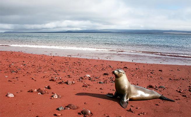 Dünyanın en ilginç 10 plajı 9