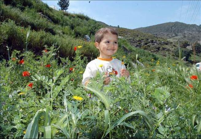 Türkiye ve Dünya'dan Bahar Manzaraları 2