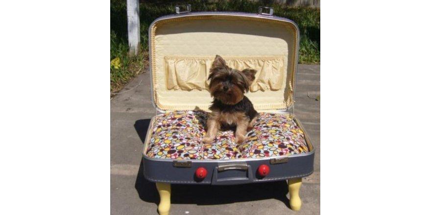 Eski bavullarınızı değerlendirin