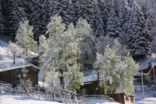 Ayder Yaylası'na kar yağdı 1