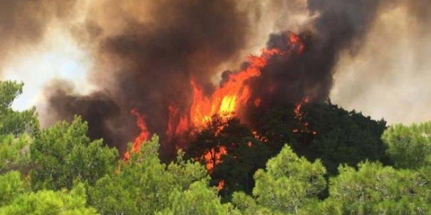 Antalya alev alev yanıyor