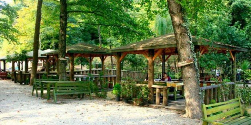 İstanbul'da doğayla iç içe olacağınız 11 gidilesi piknik alanı  .
