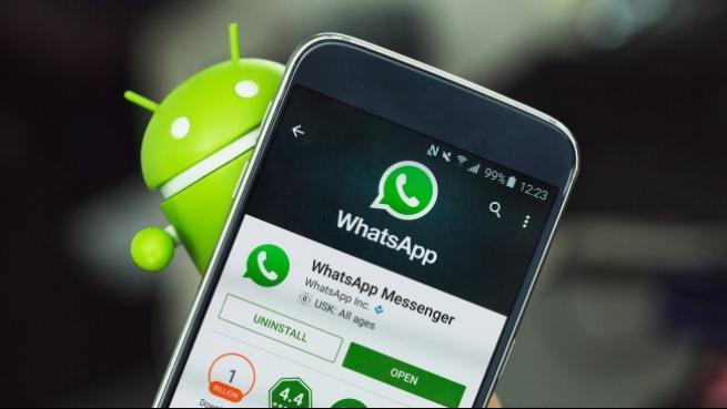 WhatsApp'ta etiketler devreye giriyor 1