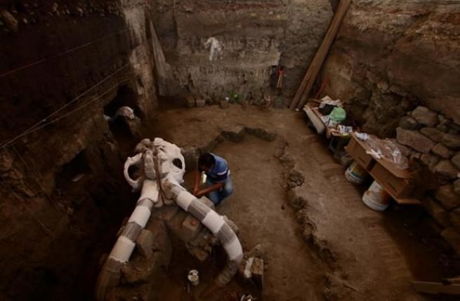 Meksika'da 14 bin yıllık mamut fosili bulundu 1