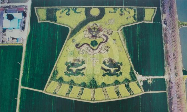 Çin'de ejderha işlemeli elbise şekli verdiler 12