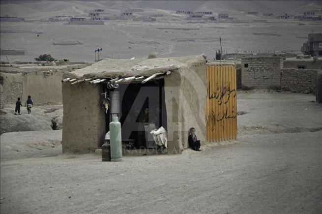 Asya'nın kalbi Afganistan'da doğal yaşam 2