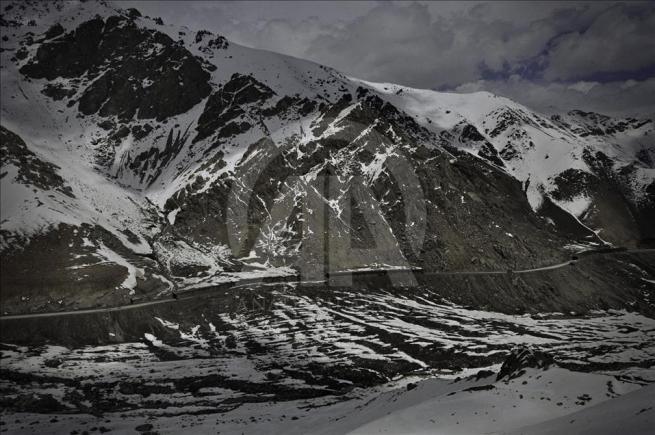 Asya'nın kalbi Afganistan'da doğal yaşam 4