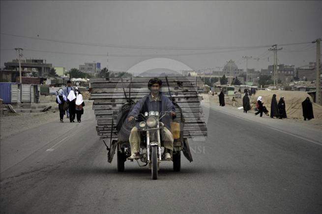 Asya'nın kalbi Afganistan'da doğal yaşam 5