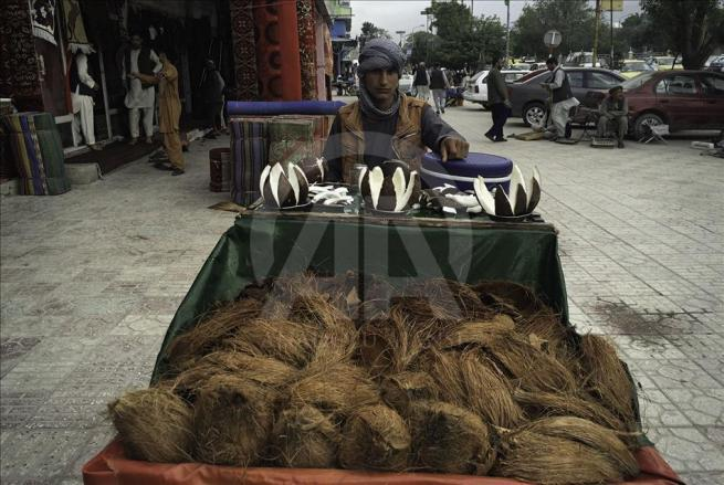 Asya'nın kalbi Afganistan'da doğal yaşam 7
