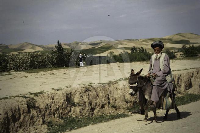 Asya'nın kalbi Afganistan'da doğal yaşam 8