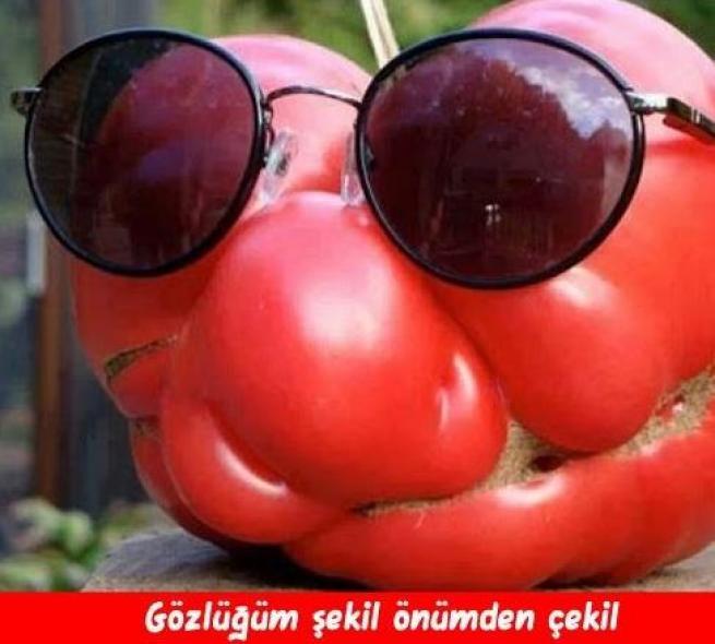 Meyveler Sebzeler Dile geldi! 18