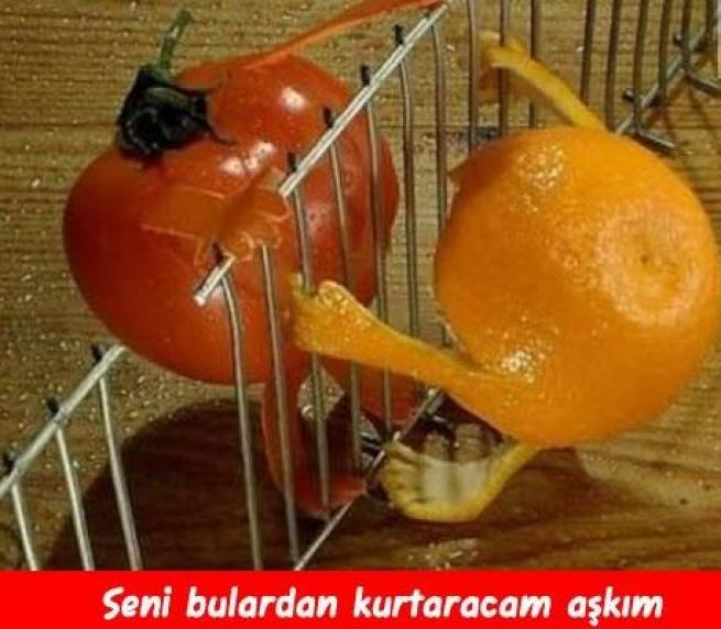 Meyveler Sebzeler Dile geldi! 5