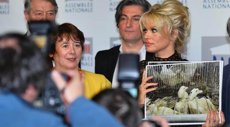 Pamela Anderson'dan Fransa'ya 'kaz ciğeri' tepkisi
