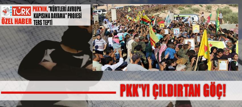 PKK'yı çıldırtan göç: Alçak örgütün 'Mülteci planı' tutmadı!