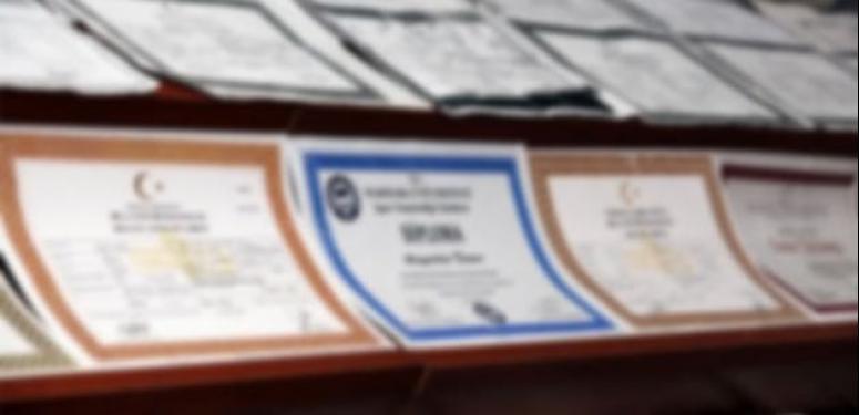 Bastır parayı al diplomayı!