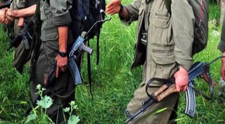 Yakalanan PKK üyesi bakın kim çıktı!