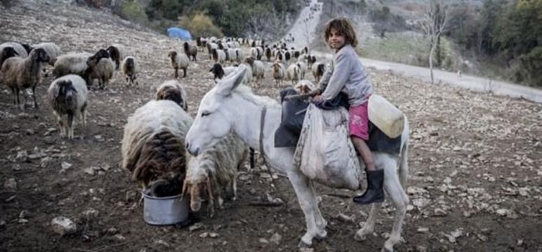Yeni bir Türkmen ve Arap sığınmacı akını!