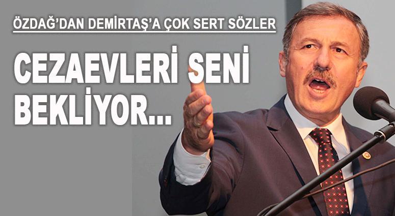 Özdağ'dan Demirtaş'a: Cezaevleri seni bekliyor