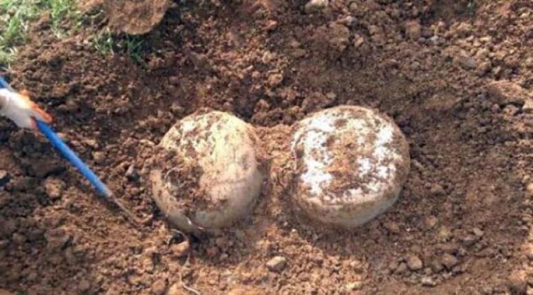 Şanlıurfa'da patlayıcı bulundu