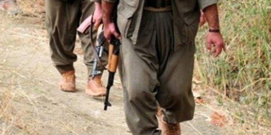 Mardin'de 1 terörist teslim oldu
