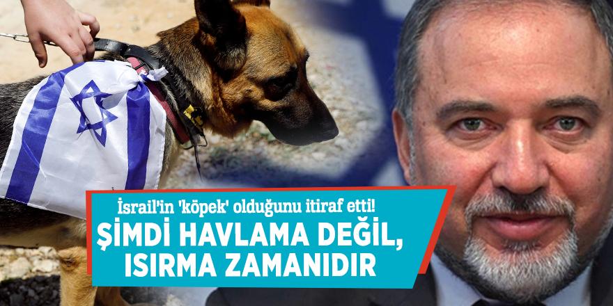 Savunma Bakanı Lieberman İsrail'in 'köpek' olduğunu itiraf etti