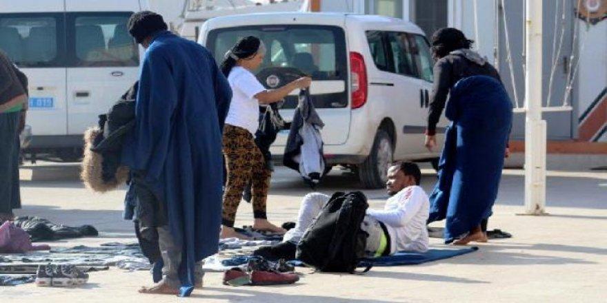 5 kaçak göçmen yakalandı