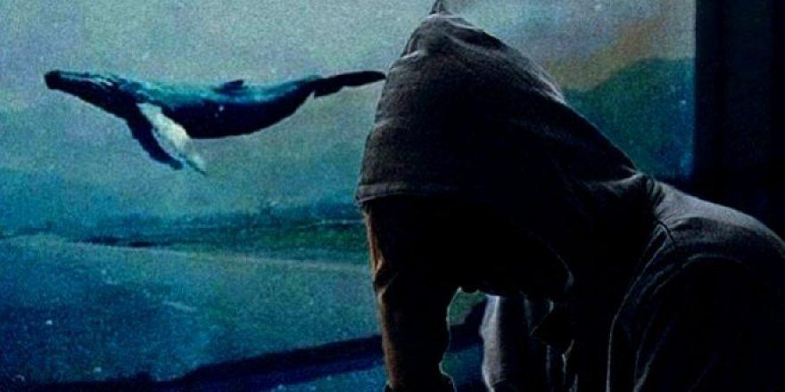 'Mavi Balina' oyunu oynayan bir genç daha intihar etti