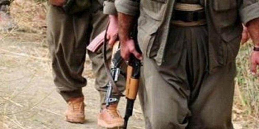 Ağrı Dağı'nda 2 PKK'lı terörist öldürüldü