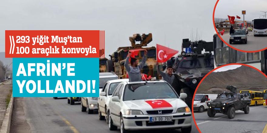 293 yiğit Muş'tan Afrin'e 100 araçlık konvoyla uğurlandı!