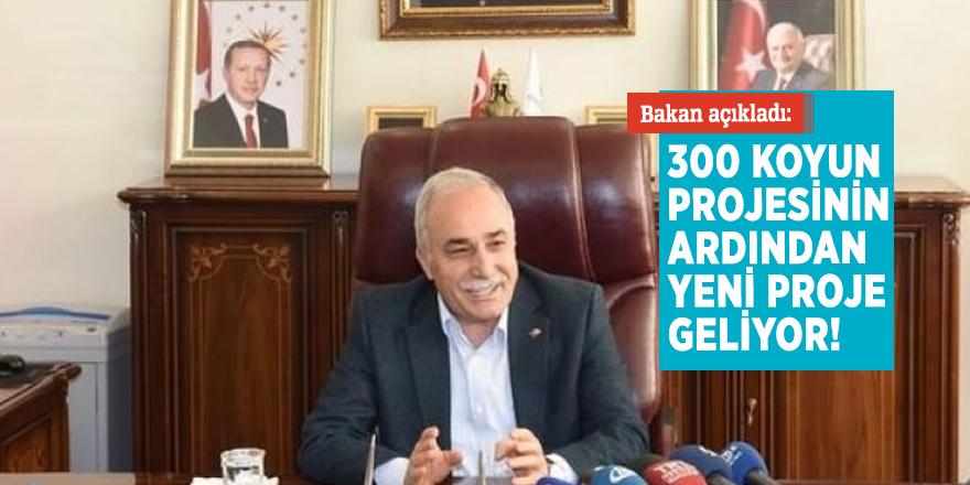 Bakan açıkladı: 300 koyun projesinin ardından yeni proje geliyor!