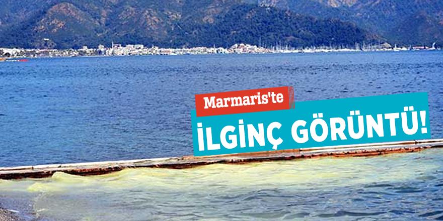 Marmaris'te deniz sarıya boyandı!