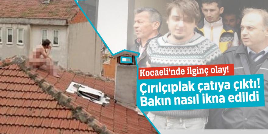 Kocaeli'nde ilginç olay! Çırılçıplak çatıya çıktı! Bakın nasıl ikna edildi