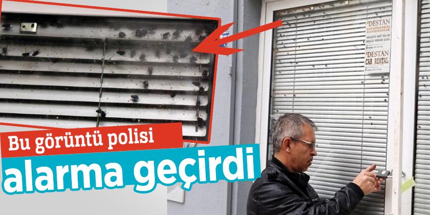 Emlakçı ofisinin camındaki sinekler polisi alarma geçirdi
