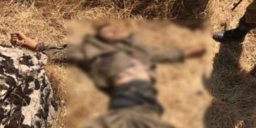 Irak'ın kuzeyinde bir terörist etkisiz hale getirildi