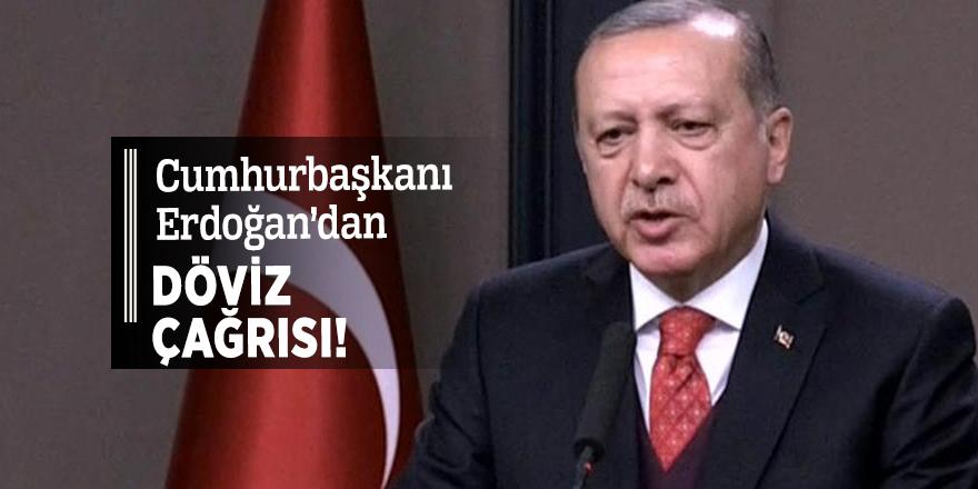 Erdoğan'dan döviz çağrısı!