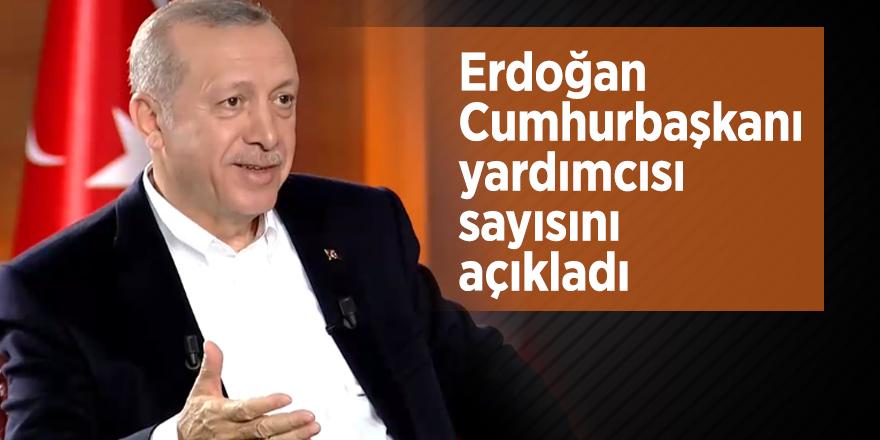 Erdoğan Cumhurbaşkanı yardımcısı sayısını açıkladı