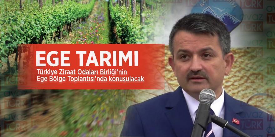 Ege tarımı, Türkiye Ziraat Odaları Birliği'nin Ege Bölge Toplantısı'nda konuşulacak