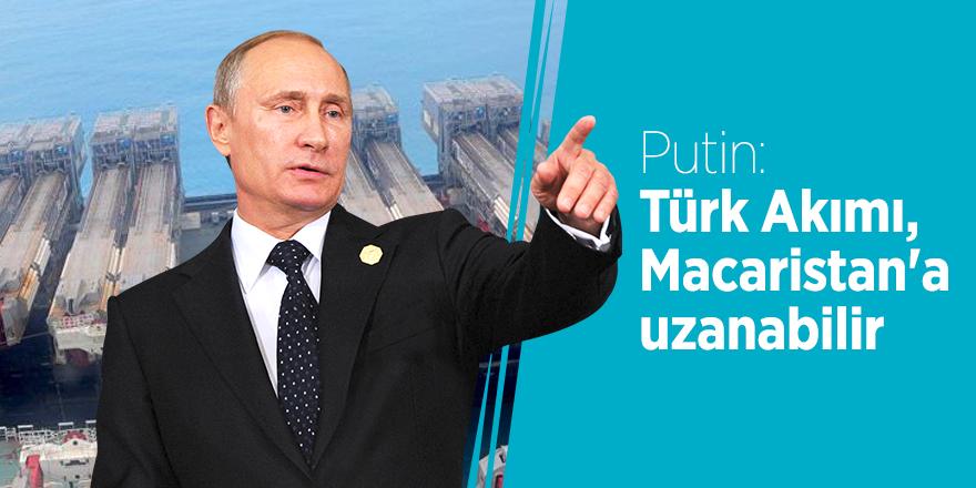 Putin: Türk Akımı, Macaristan'a uzanabilir