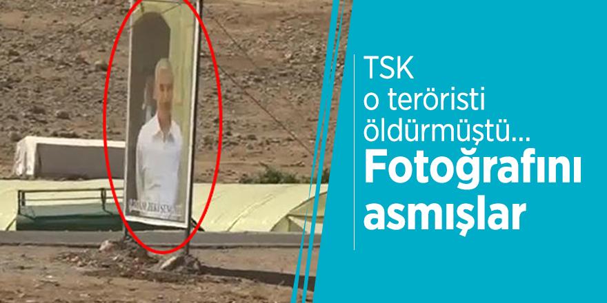 TSK o teröristi öldürmüştü… Fotoğrafını asmışlar