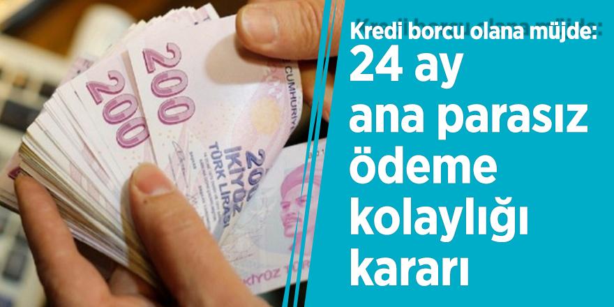 Kredi borcu olana müjde: 24 ay ana parasız ödeme kolaylığı kararı